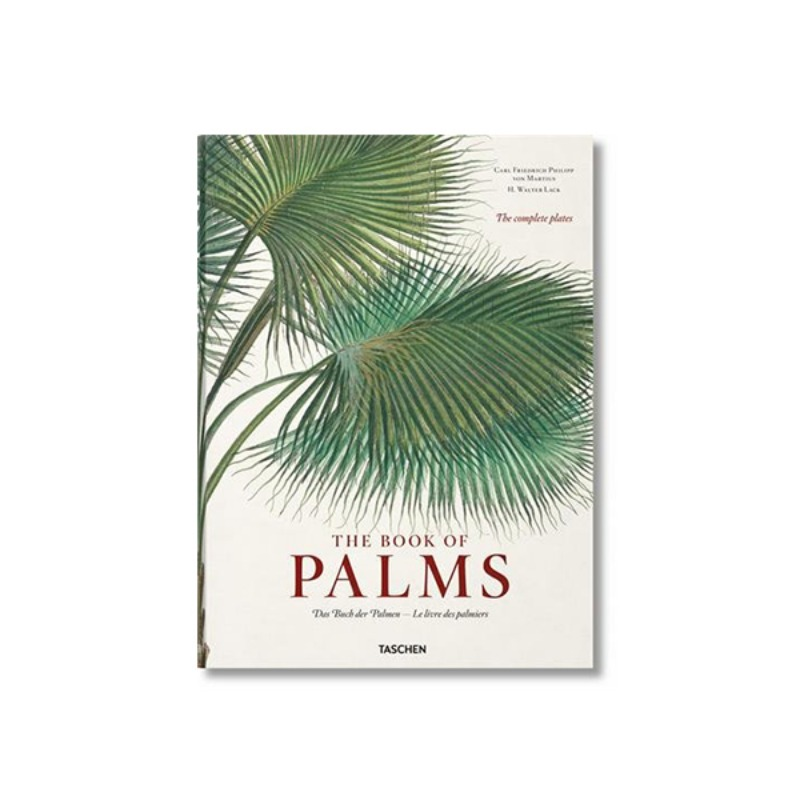 The Book of Palms - von Martius